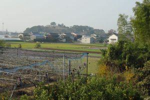 奥に見える小高い山が岡山公園です